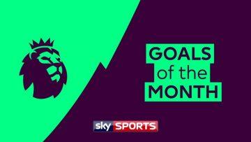 Premier League Goals of the Month