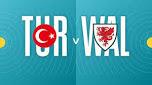 Turkey v Wales