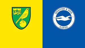 Norwich City v Brighton